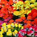 Comment envoyer des fleurs en Espagne?